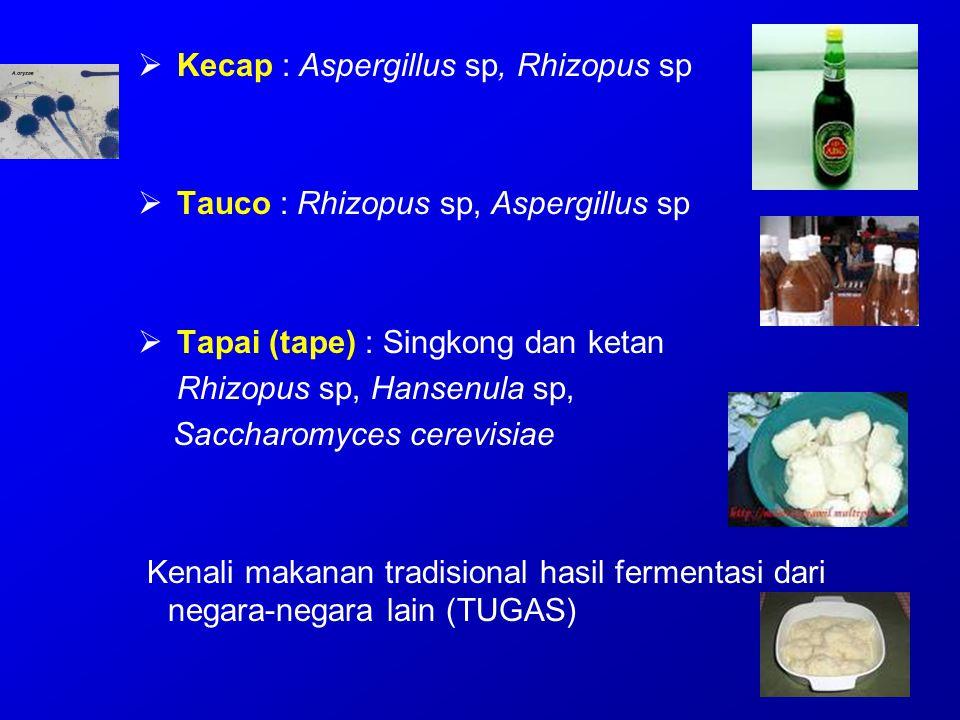 Kecap : Aspergillus sp, Rhizopus sp