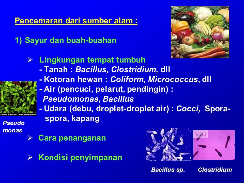 Pencemaran dari sumber alam : Sayur dan buah-buahan