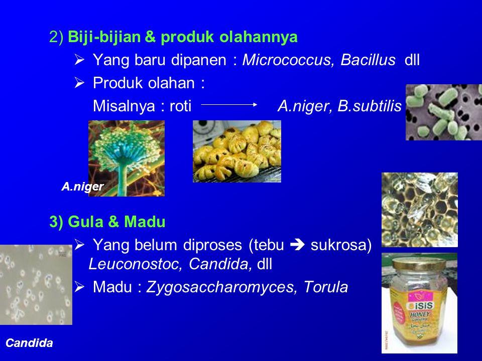 2) Biji-bijian & produk olahannya