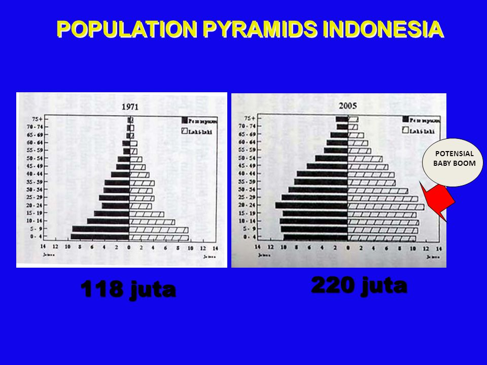 POPULATION PYRAMIDS INDONESIA