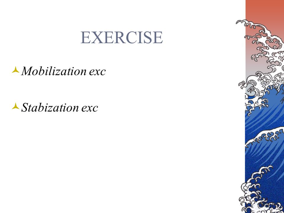 EXERCISE Mobilization exc Stabization exc