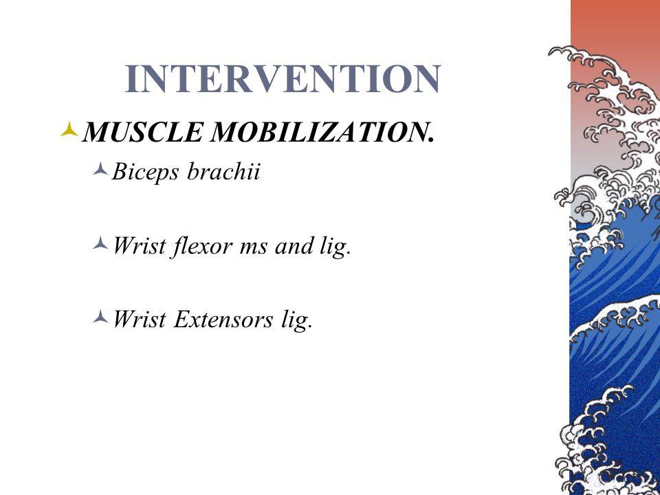 INTERVENTION MUSCLE MOBILIZATION. Biceps brachii