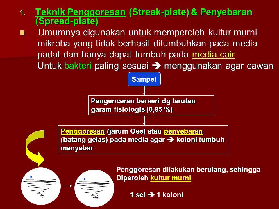 Teknik Penggoresan (Streak-plate) & Penyebaran (Spread-plate)