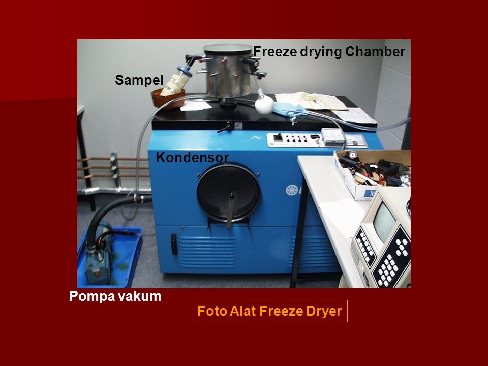 Freeze drying Chamber Sampel Kondensor Pompa vakum Foto Alat Freeze Dryer