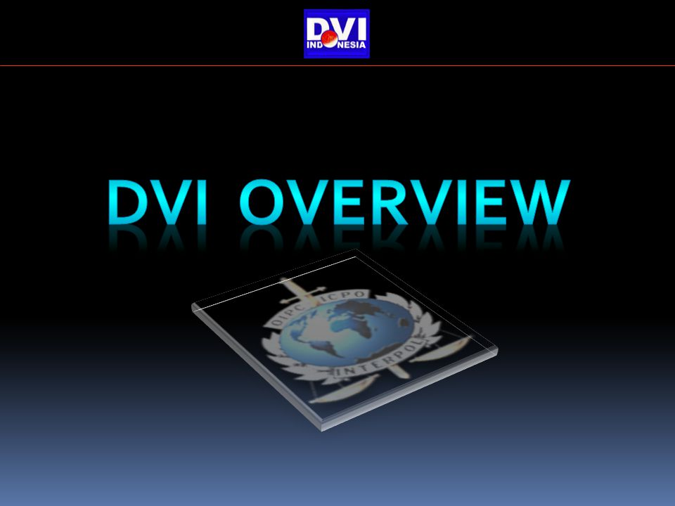 DVI OVERVIEW