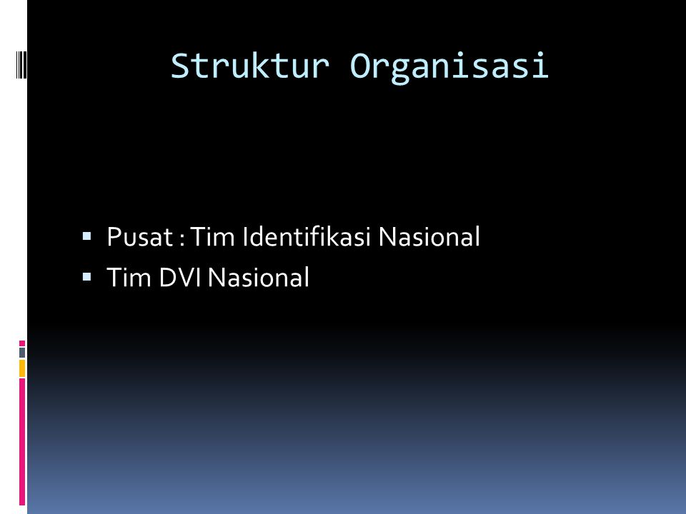 Struktur Organisasi Pusat : Tim Identifikasi Nasional Tim DVI Nasional