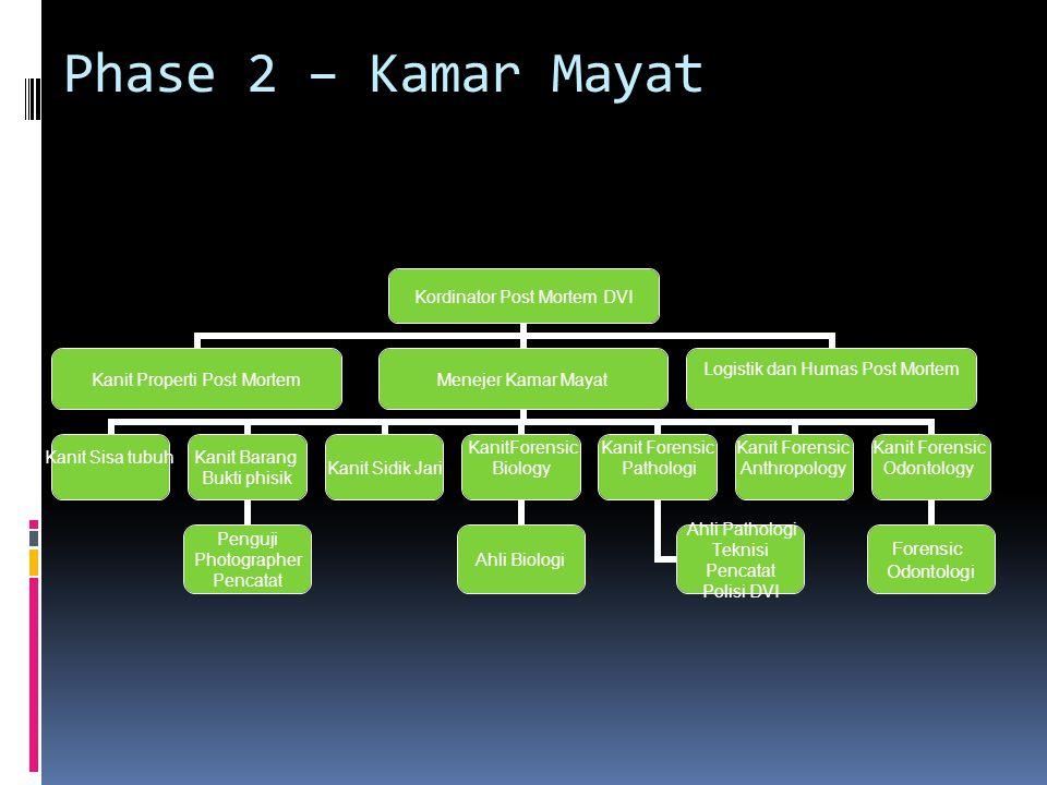 Phase 2 – Kamar Mayat