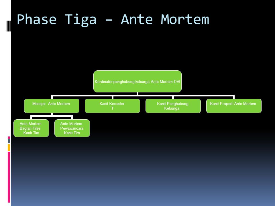 Phase Tiga – Ante Mortem
