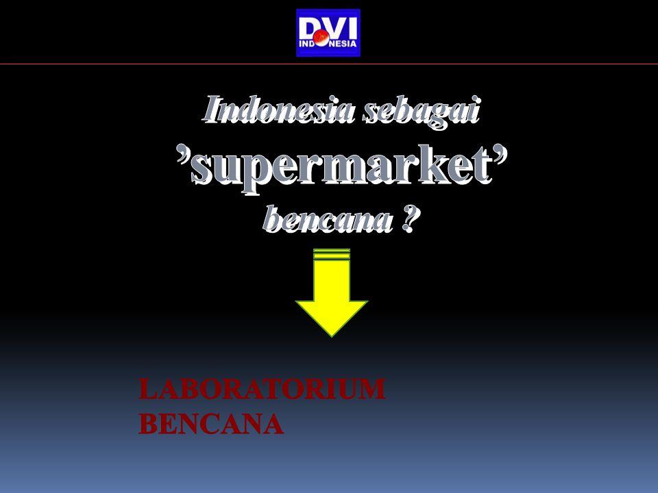 Indonesia sebagai 'supermarket' bencana