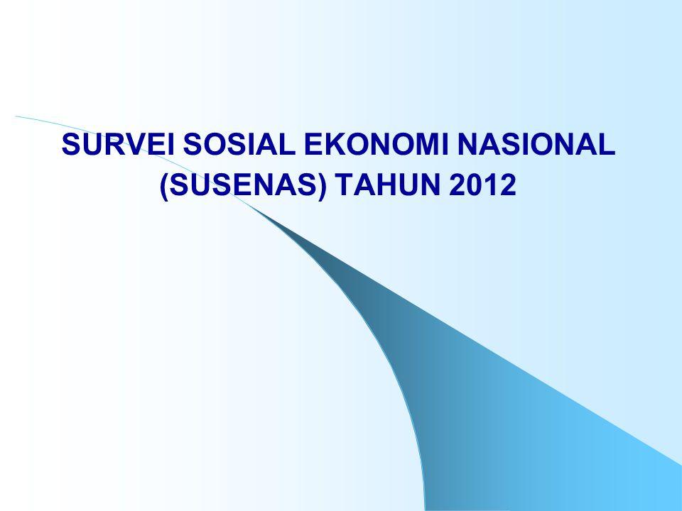 SURVEI SOSIAL EKONOMI NASIONAL (SUSENAS) TAHUN 2012