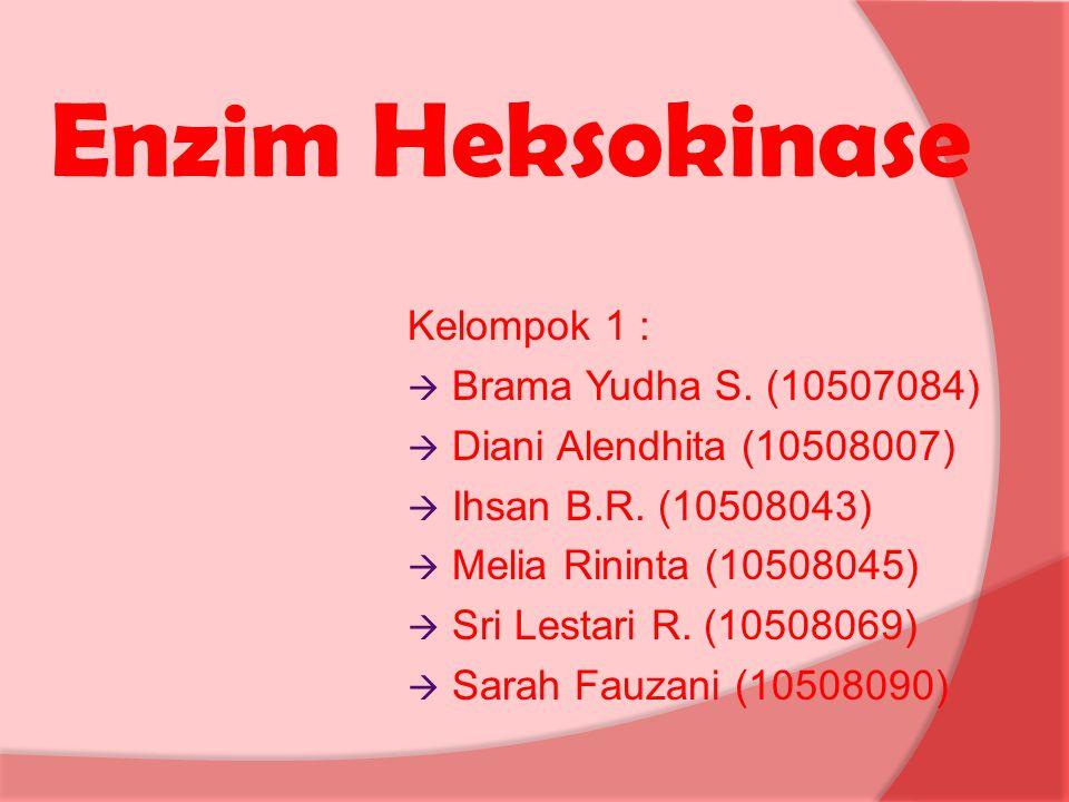 Enzim Heksokinase Kelompok 1 : Brama Yudha S. (10507084)