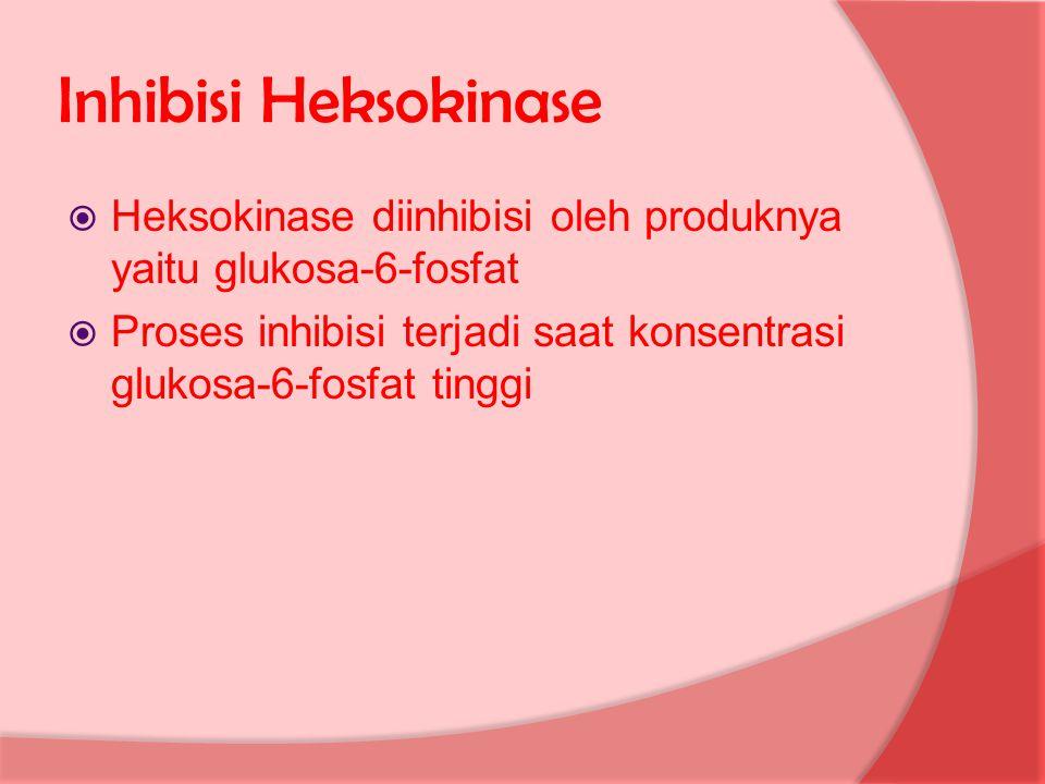 Inhibisi Heksokinase Heksokinase diinhibisi oleh produknya yaitu glukosa-6-fosfat.