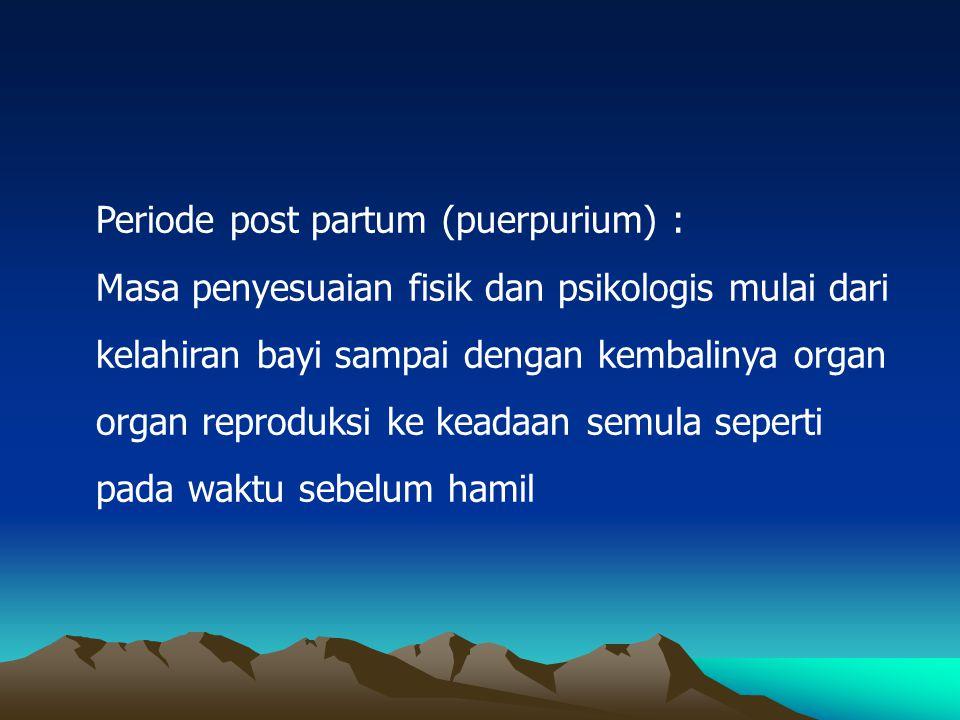 Periode post partum (puerpurium) :