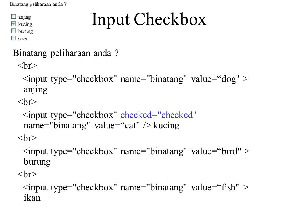 Input Checkbox