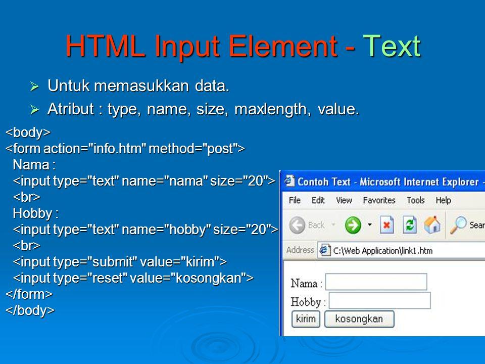 HTML Input Element - Text
