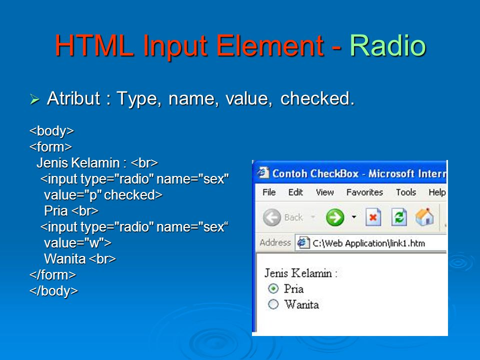 HTML Input Element - Radio