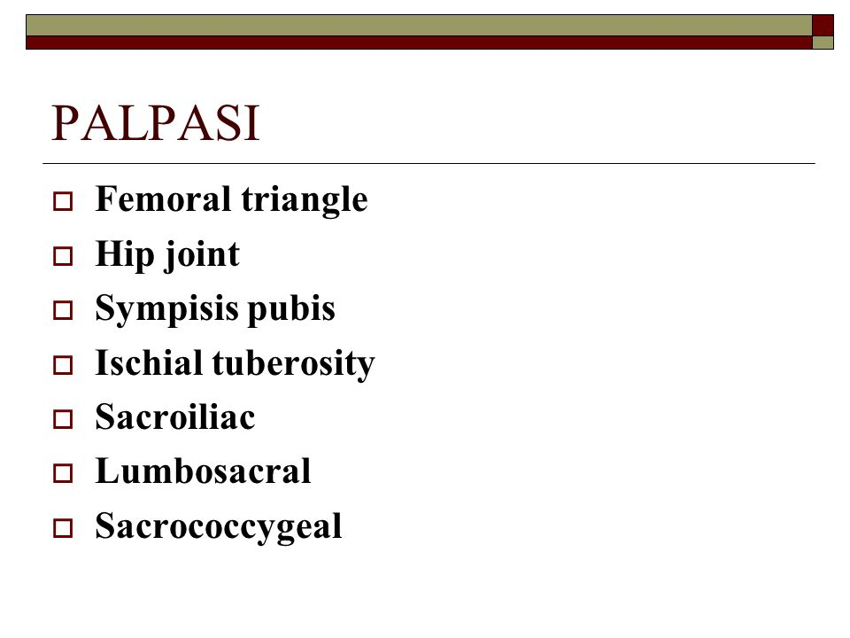 PALPASI Femoral triangle Hip joint Sympisis pubis Ischial tuberosity