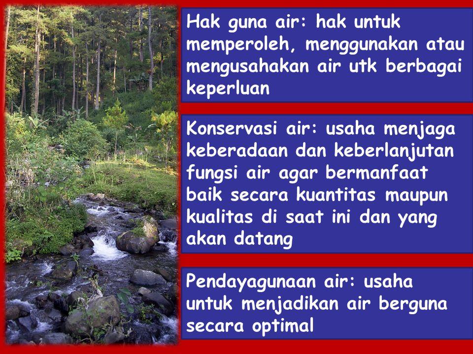 Hak guna air: hak untuk memperoleh, menggunakan atau mengusahakan air utk berbagai keperluan