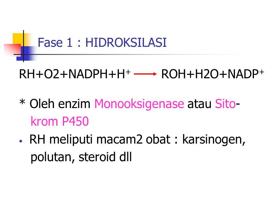 Fase 1 : HIDROKSILASI RH+O2+NADPH+H+ ROH+H2O+NADP+ * Oleh enzim Monooksigenase atau Sito-