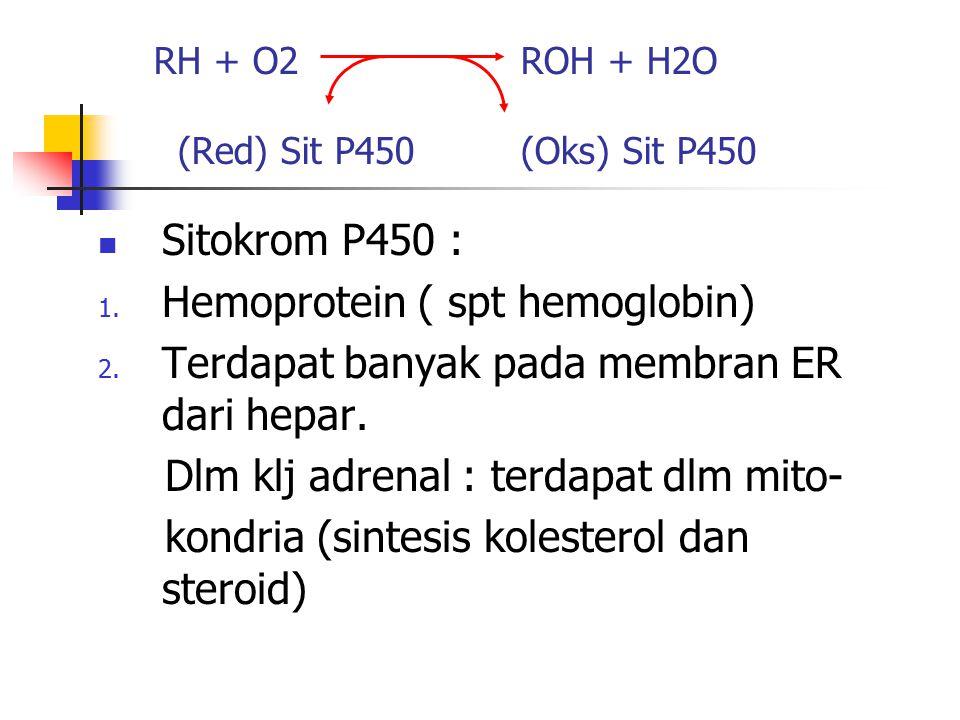 RH + O2 ROH + H2O (Red) Sit P450 (Oks) Sit P450