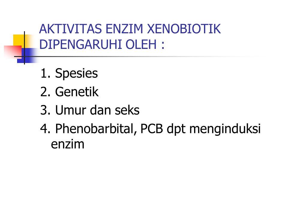 AKTIVITAS ENZIM XENOBIOTIK DIPENGARUHI OLEH :