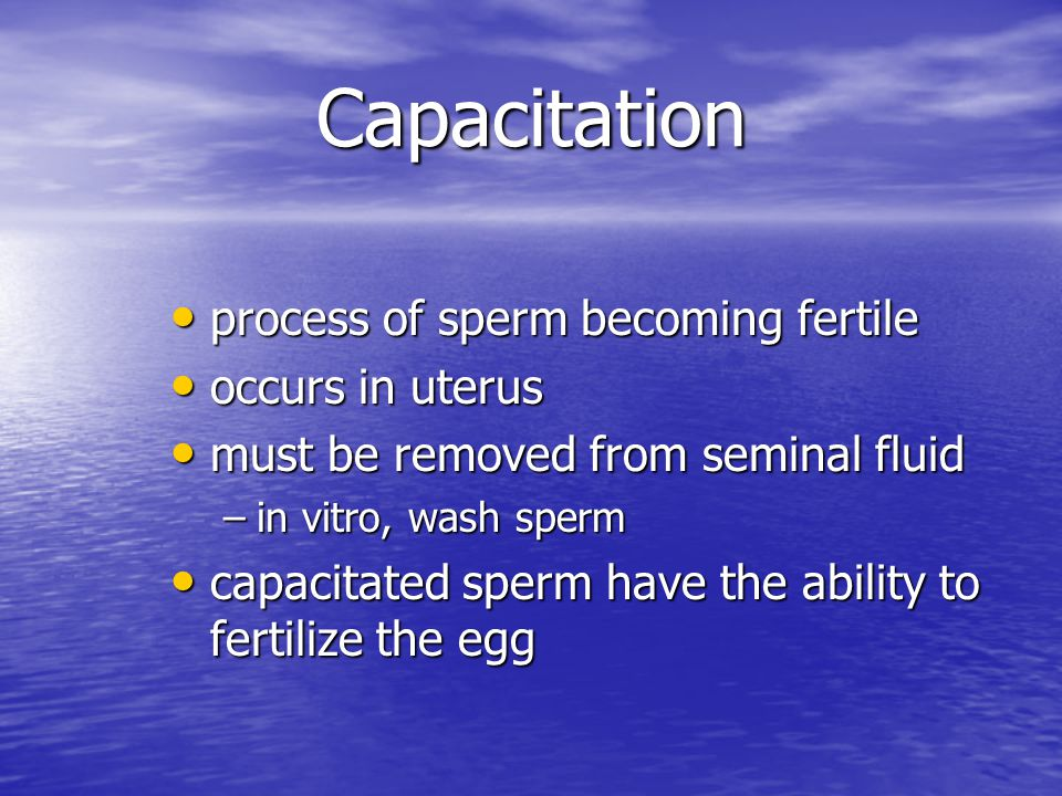 Capacitation process of sperm becoming fertile occurs in uterus