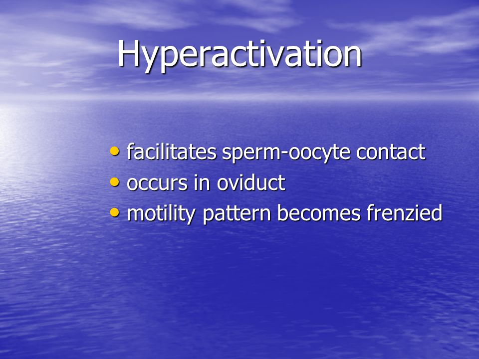 Hyperactivation facilitates sperm-oocyte contact occurs in oviduct