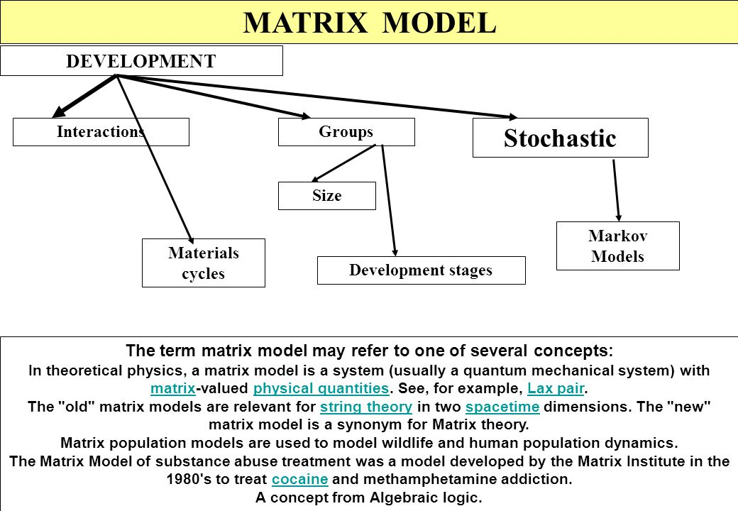 MATRIX MODEL Stochastic DEVELOPMENT Interactions Groups Size