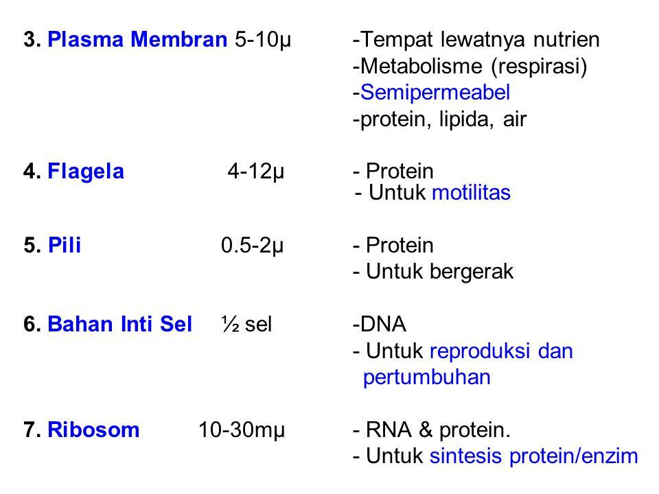 3. Plasma Membran 5-10µ -Tempat lewatnya nutrien