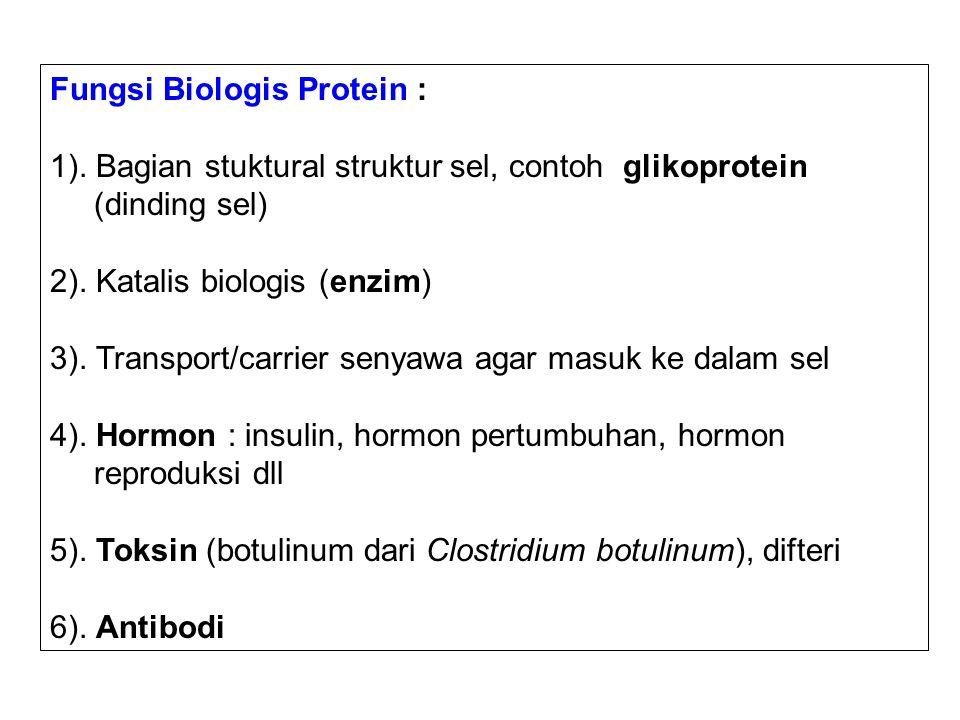 Fungsi Biologis Protein :