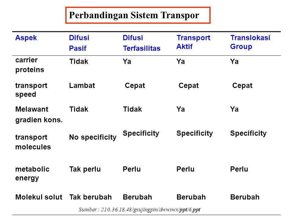 Perbandingan Sistem Transpor