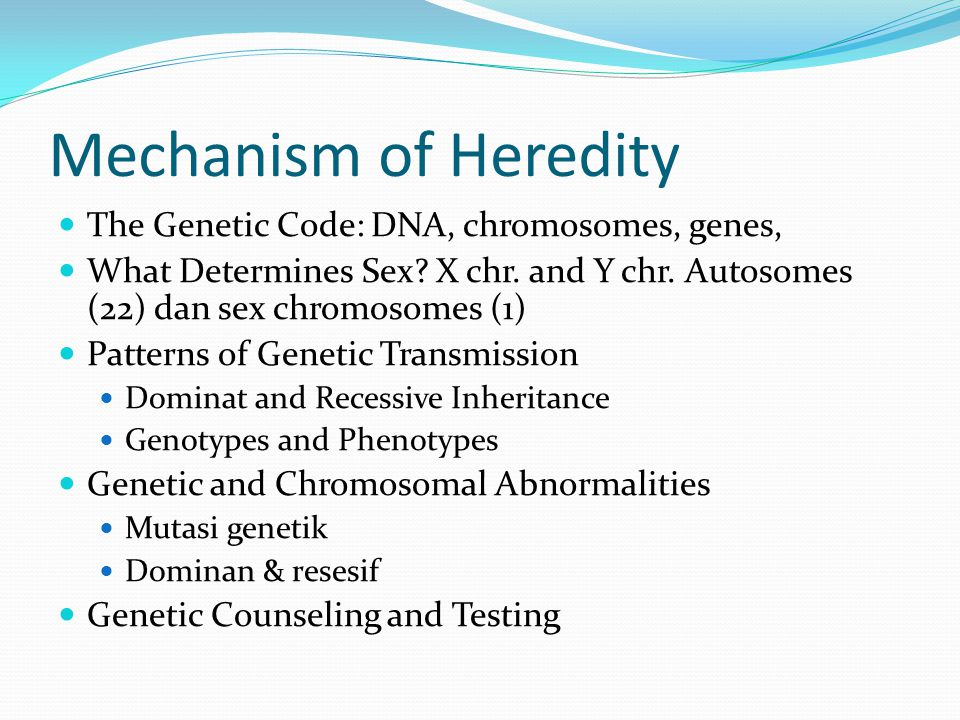 Mechanism of Heredity The Genetic Code: DNA, chromosomes, genes,