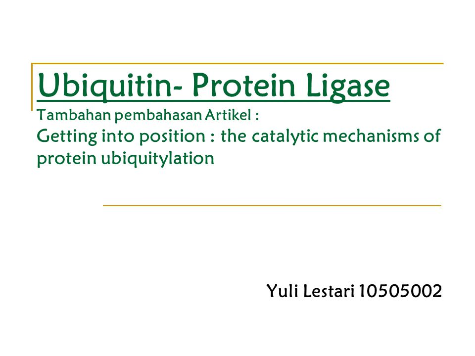 Ubiquitin- Protein Ligase Tambahan pembahasan Artikel : Getting into position : the catalytic mechanisms of protein ubiquitylation