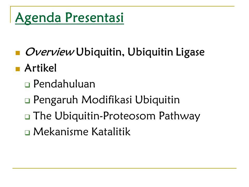 Agenda Presentasi Overview Ubiquitin, Ubiquitin Ligase Artikel