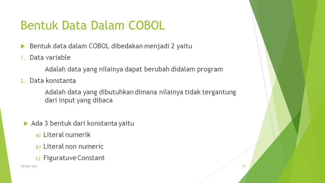 Bentuk Data Dalam COBOL