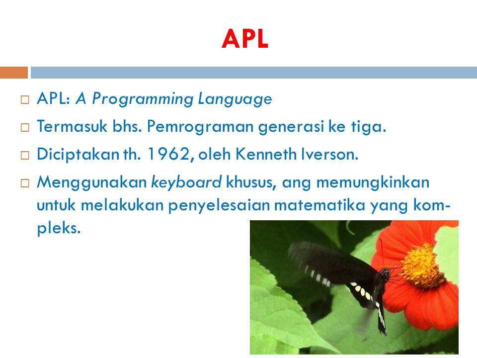 APL APL: A Programming Language