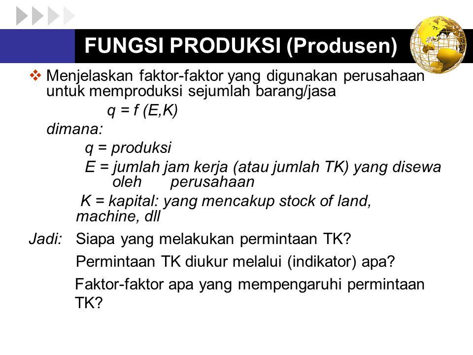 FUNGSI PRODUKSI (Produsen)