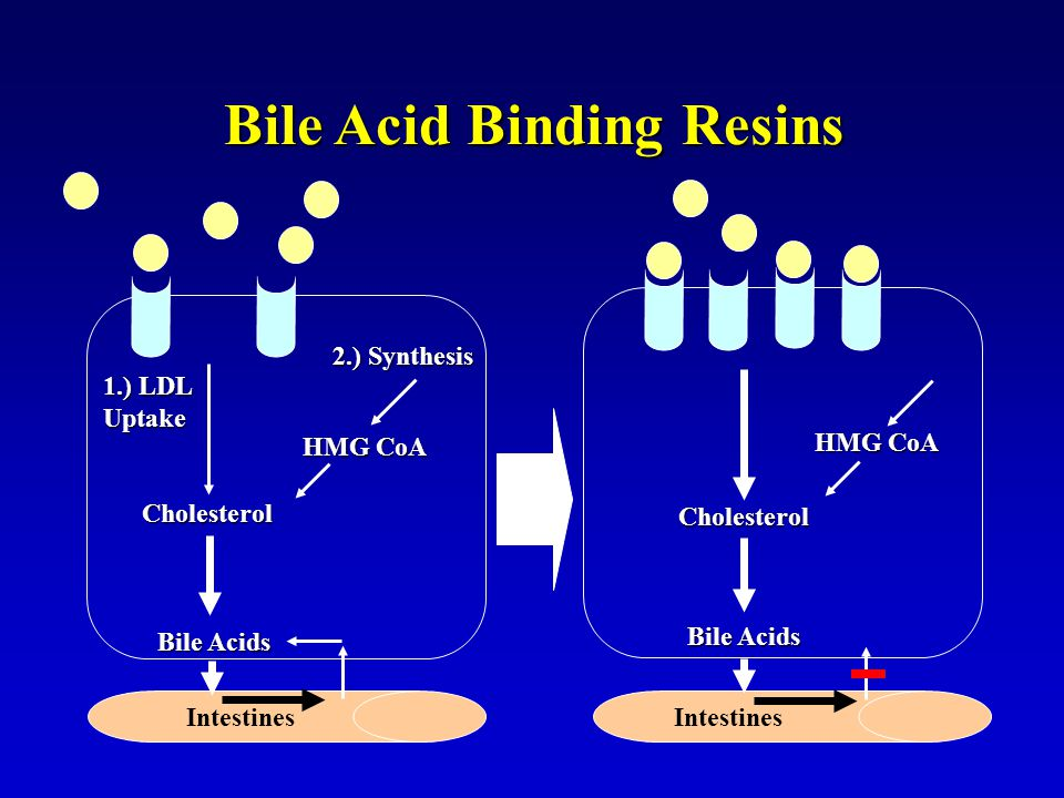 Bile Acid Binding Resins