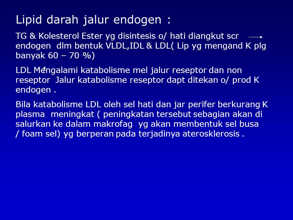 Lipid darah jalur endogen :