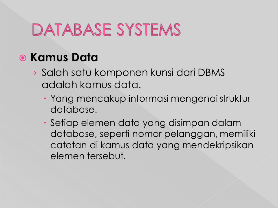 DATABASE SYSTEMS Kamus Data