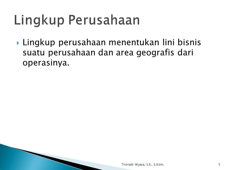 Lingkup Perusahaan Lingkup perusahaan menentukan lini bisnis suatu perusahaan dan area geografis dari operasinya.