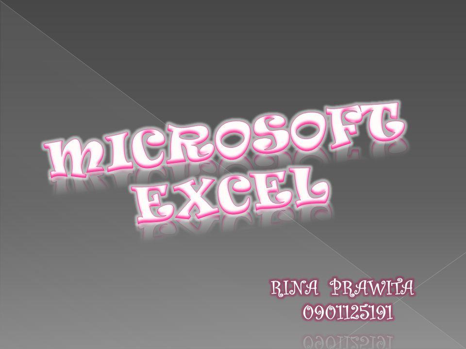 MICROSOFT EXCEL RINA PRAWITA 0901125191