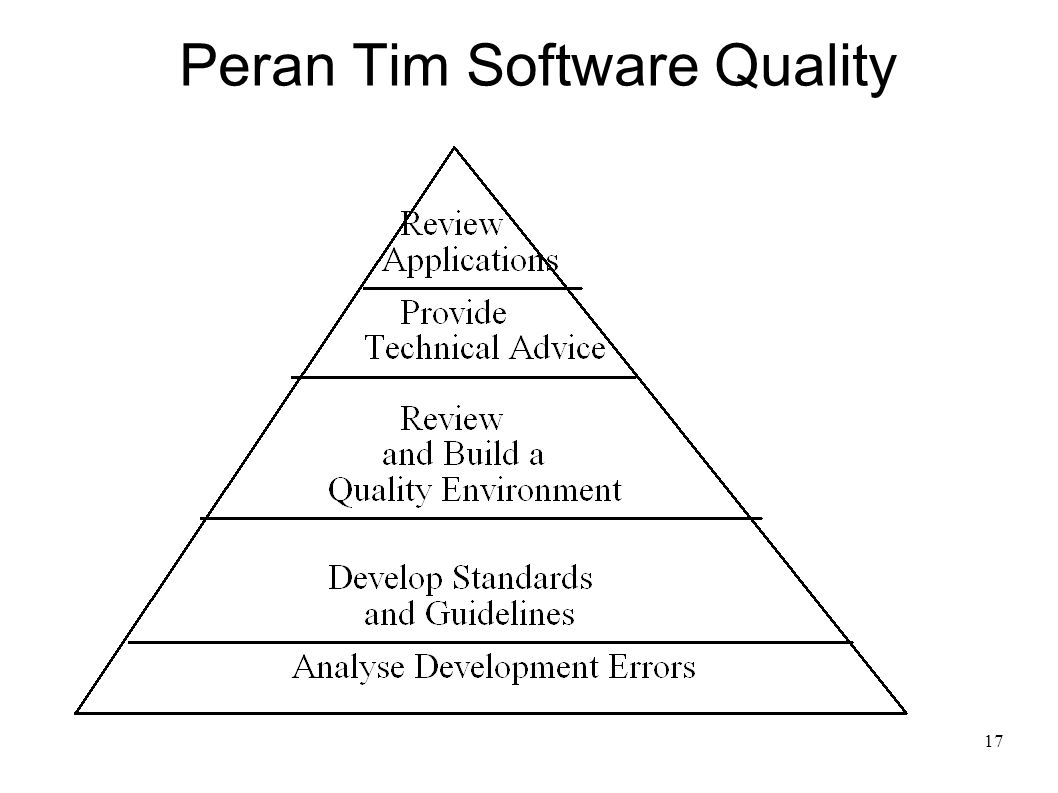 Peran Tim Software Quality