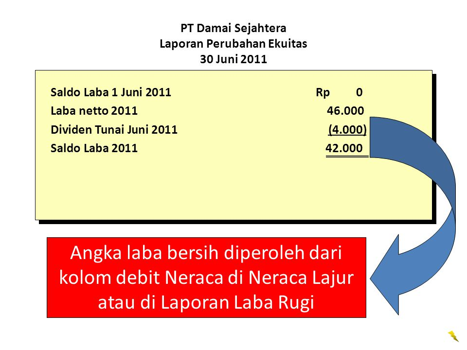 PT Damai Sejahtera Laporan Perubahan Ekuitas 30 Juni 2011