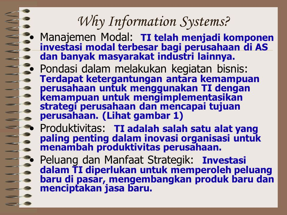 Why Information Systems