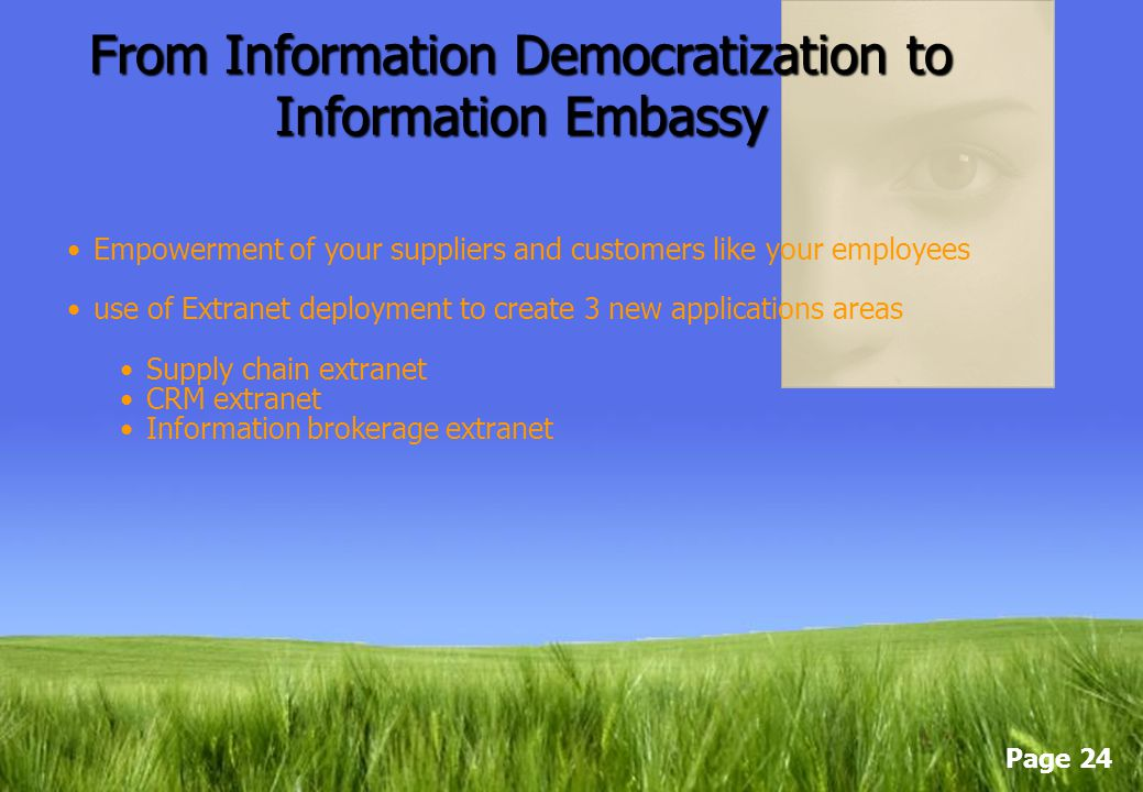 From Information Democratization to Information Embassy