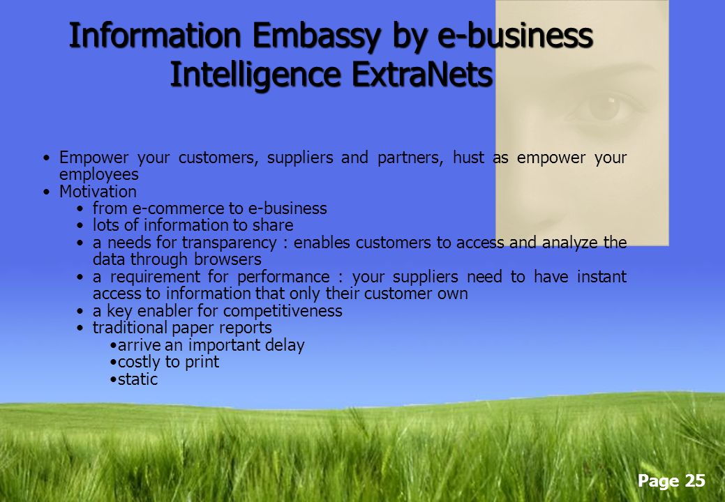 Information Embassy by e-business Intelligence ExtraNets