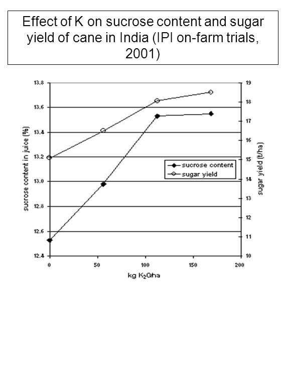 Effect of K on sucrose content and sugar yield of cane in India (IPI on-farm trials, 2001)