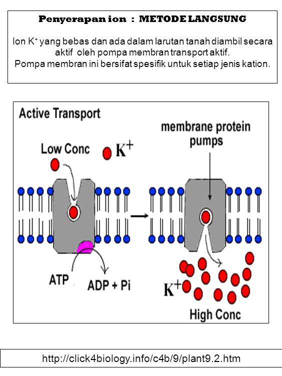 Penyerapan ion : METODE LANGSUNG