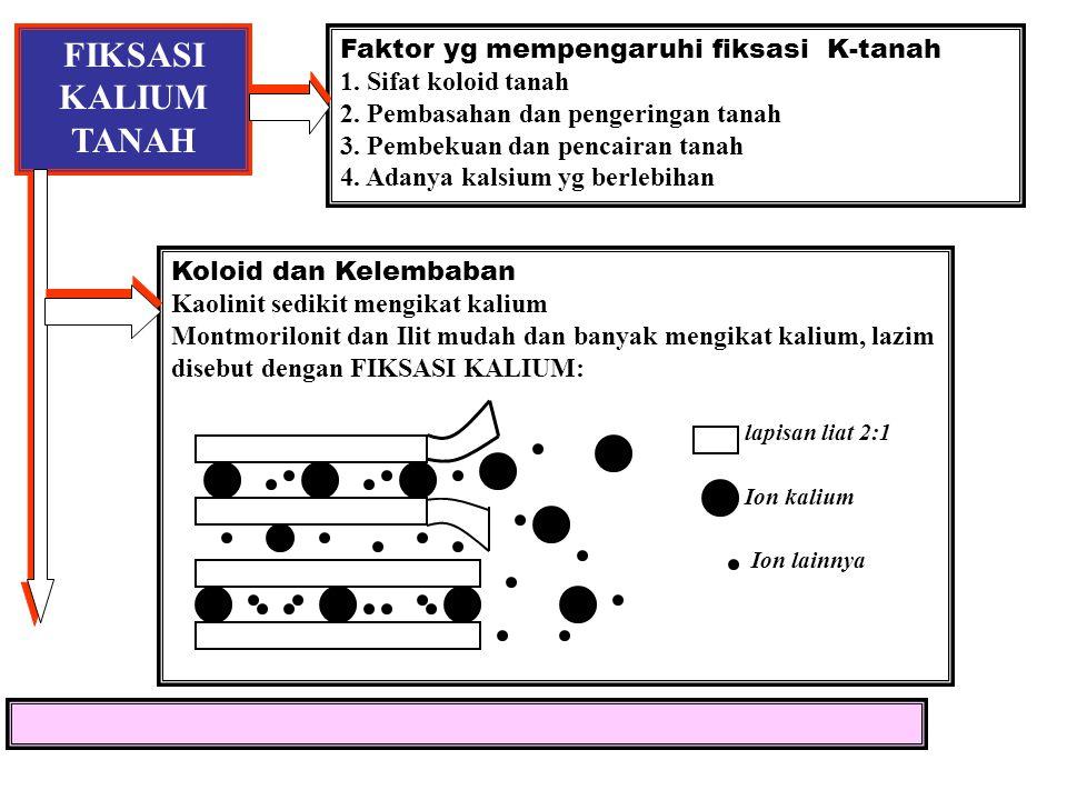 FIKSASI KALIUM TANAH Faktor yg mempengaruhi fiksasi K-tanah